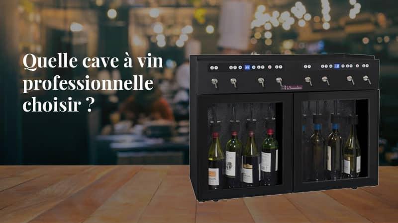 Quelle cave à vin professionnelle choisir ?