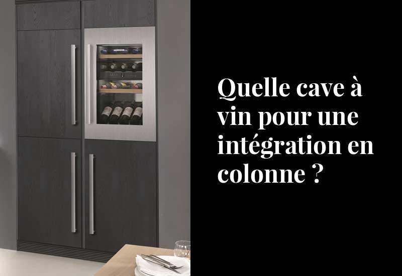 Quelle cave à vin pour une intégration en colonne ?